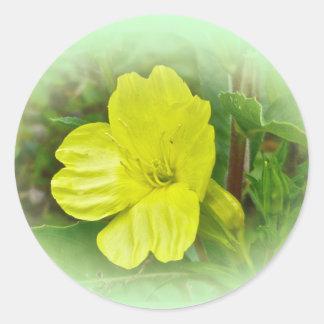 サクラソウの黄色い野生の花の調整項目 ラウンドシール
