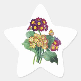 サクラソウ属のAuricula - Cowslip-ピエールヨセフRedoute 星シール