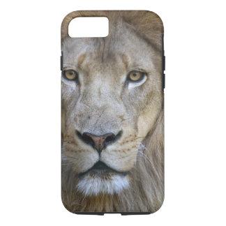 サクラメントの動物園の成人男子のライオン、カリフォルニア iPhone 8/7ケース