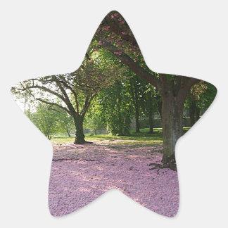 サクラ属のピンクの花のカーペット 星シール