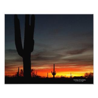 サグアロのサボテンとのSonoranの砂漠の日没アリゾナ フォトプリント