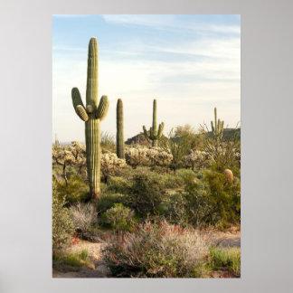 サグアロのサボテン、アリゾナ、米国 ポスター