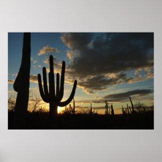 サグアロの日没IIアリゾナの砂漠の景色 ポスター