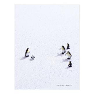 サッカーを遊んでいるペンギン ポストカード