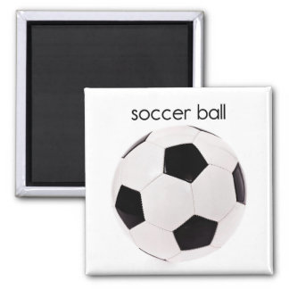 サッカーボール冷却装置磁石 マグネット