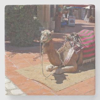 サドルおよび毛布によって置いているブラウンのラクダ ストーンコースター