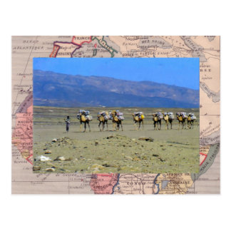 サハラ砂漠砂漠を交差させるラクダの列車 ポストカード