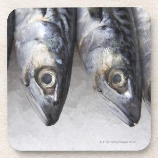 サバの魚、日の新しい捕獲物 コースター
