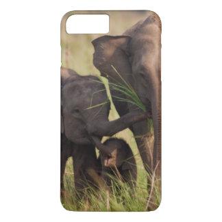 サバンナのインドのアジアゾウ家族 iPhone 8 PLUS/7 PLUSケース