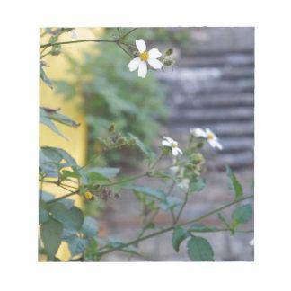 サバンナのジョージアの花柄の花の自然 ノートパッド