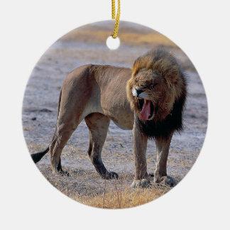 サバンナのライオン セラミックオーナメント