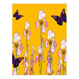 サフランのsharlesによるピンクのアイリス黒の蝶 ポストカード