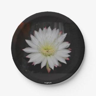 サボテンのバラの紙皿 ペーパープレート