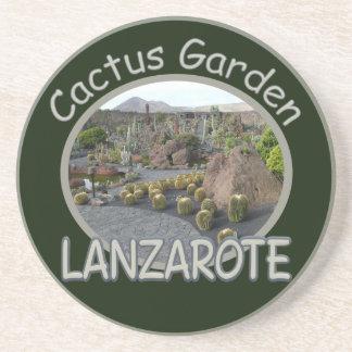 サボテンの庭のコースター コースター