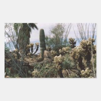 サボテンの庭 長方形シール