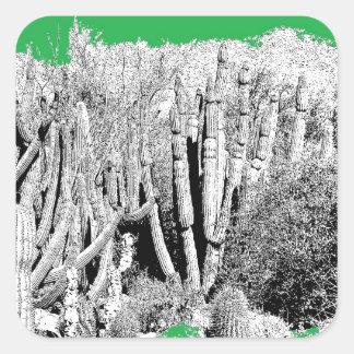 サボテンの森林 スクエアシール