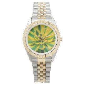 サボテンの腕時計 腕時計