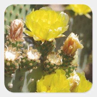 サボテンの花 スクエアシール