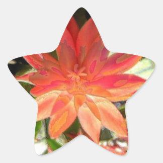 サボテンの花 星シール