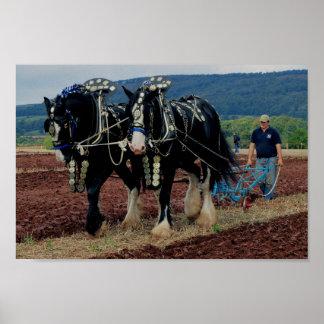 サマセット州のイギリスの馬の耕す選手権2011年 ポスター