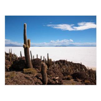 サラール族de Uyuniのサボテンの郵便はがき ポストカード