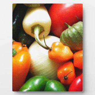サルサの野菜、トマト、コショウ、タマネギ フォトプラーク