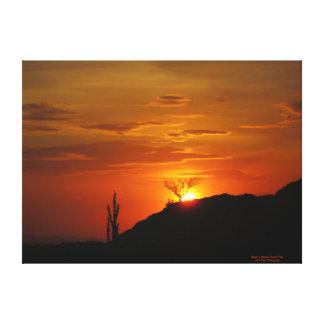 サワロ国立公園の日没 キャンバスプリント
