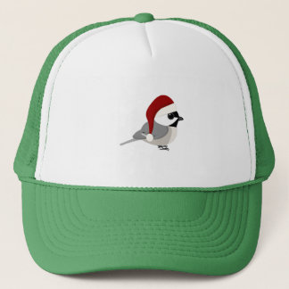 サンタのかわいい《鳥》アメリカゴガラ キャップ