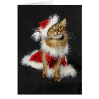 サンタの小さい助手ソマリ族猫のクリスマス カード