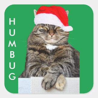 サンタの帽子が付いているクリスマス猫のばかばかしい写真 スクエアシール