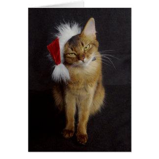 サンタの帽子のクリスマスの無愛想なソマリ族猫 カード