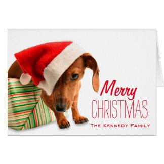 サンタの帽子の犬 カード
