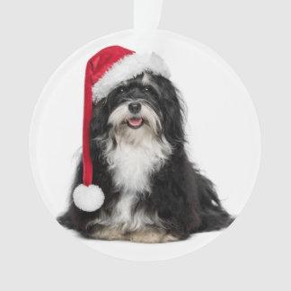 サンタの帽子を持つクリスマスのHavaneseおもしろいな犬 オーナメント