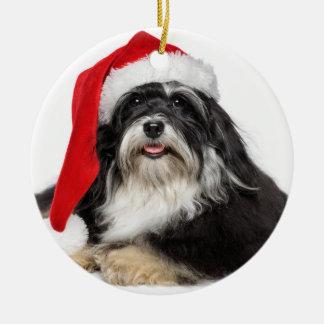 サンタの帽子を持つクリスマスのHavanese美しい犬 セラミックオーナメント