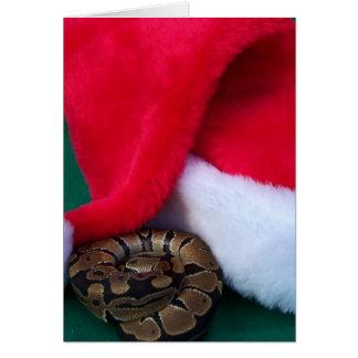 サンタの帽子、ヘビのクリスマスの隣の球の大蛇 カード