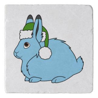 サンタの緑の帽子が付いている淡いブルーの北極ノウサギ トリベット