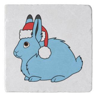 サンタの赤い帽子が付いている淡いブルーの北極ノウサギ トリベット