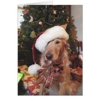 サンタの足のクリスマスカード カード