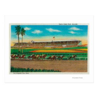 サンタアニタ公園の馬RacesArcadia、カリフォルニア ポストカード