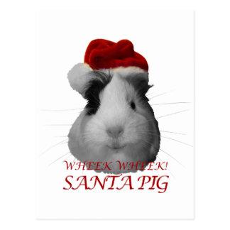 サンタクロースのブタのモルモットのクリスマスの休日 ポストカード