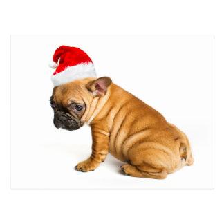 サンタクロースの帽子を身に着けているフレンチ・ブルドッグの子犬 ポストカード