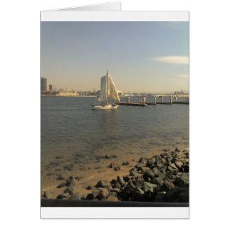 サンディエゴの冬 カード