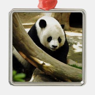 サンディエゴの動物園のジャイアントパンダ高高 メタルオーナメント