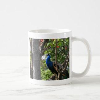 サンディエゴの動物園の孔雀 コーヒーマグカップ