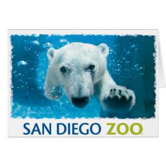 サンディエゴの動物園の白くま カード