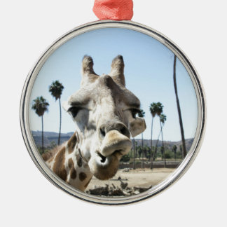 サンディエゴの動物園 メタルオーナメント