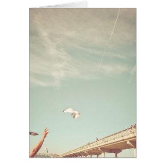 サンディエゴの夏 カード