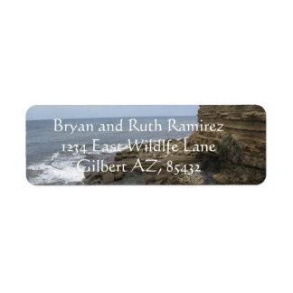 サンディエゴ、カリフォルニアのビーチそして石 ラベル