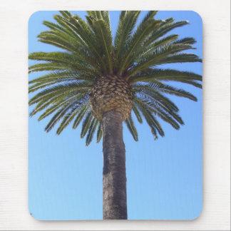 サンディエゴ、カリフォルニアのヤシの木 マウスパッド