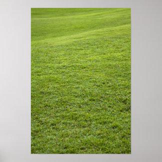 サンファン、プエルトリコ-芝生はあります ポスター